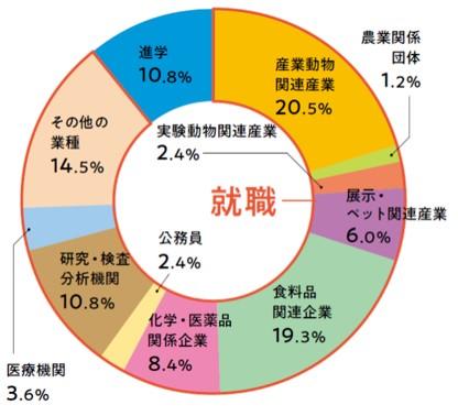 就職先比率円グラフ