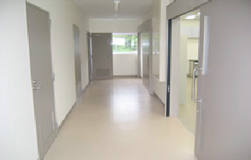 産業動物エネルギー代謝研究棟の廊下