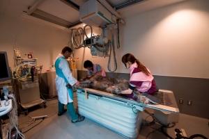 放射線検査室3